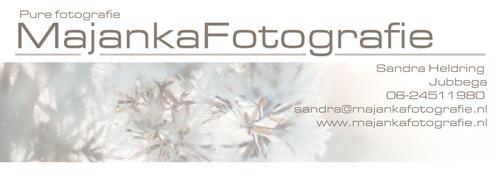 Logo Sandra
