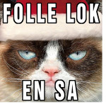 FOLLELOK